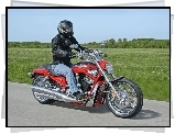 Harley Davidson Screamin Eagle