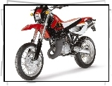 Enduro, Cross, RXV 4.5, Aprilia, Motor